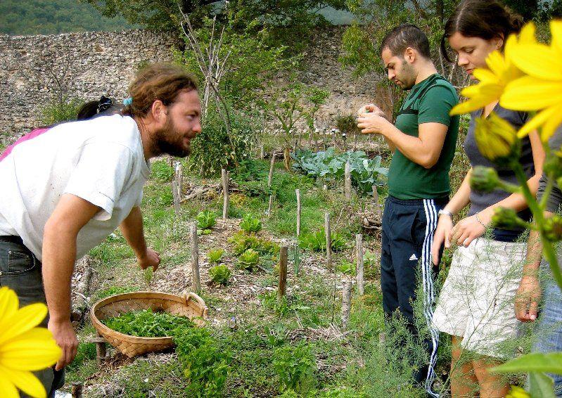 farm volunteer nepal sustainable agriculture volunteering in nepal